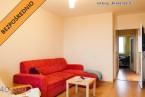 Mieszkanie do wynajęcia46 m2